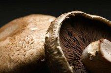 Portabello Mushrooms